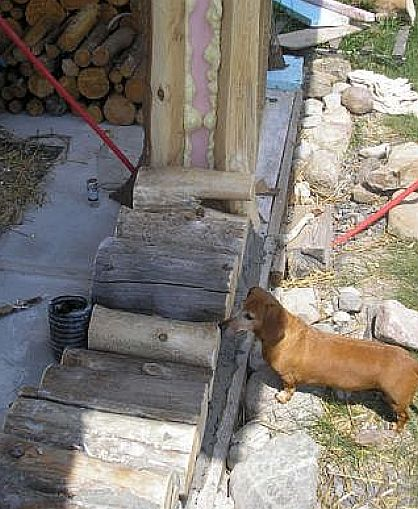 Tom Huber cabin Log End Dog