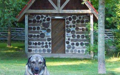 Cordwood Sweat Lodges & Dog Houses