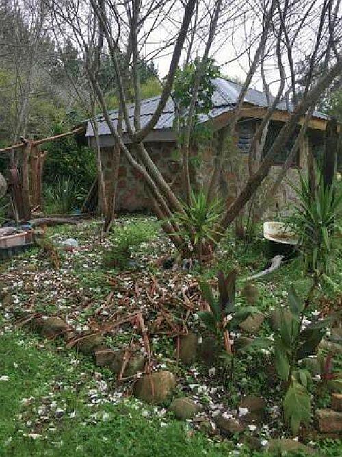 Loveridge Woodcraft NZ Tokomaru Bay 4A.jpg