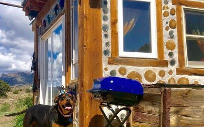 """The Dogs of Cordwood """"Who Let the Dogs Out!"""""""