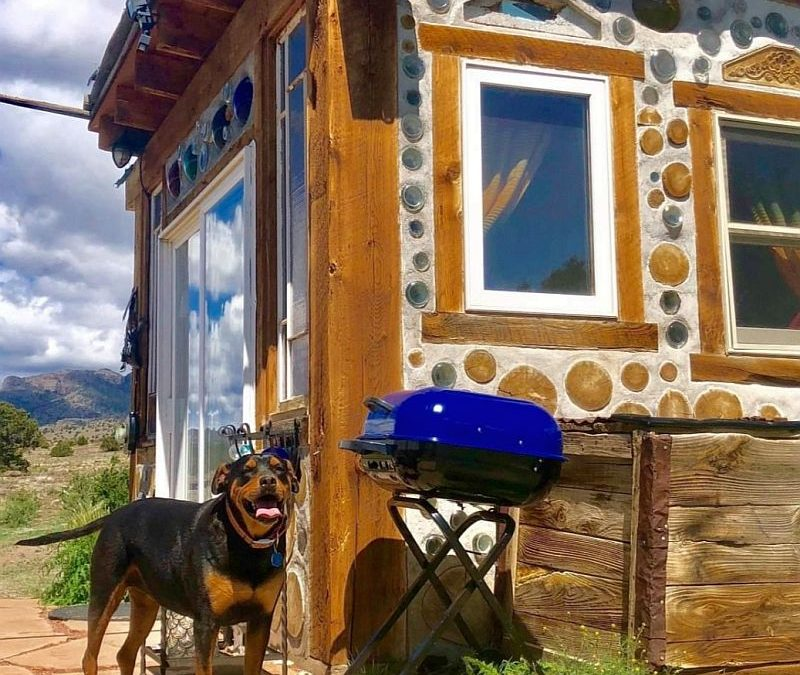 "The Dogs of Cordwood ""Who Let the Dogs Out!"""